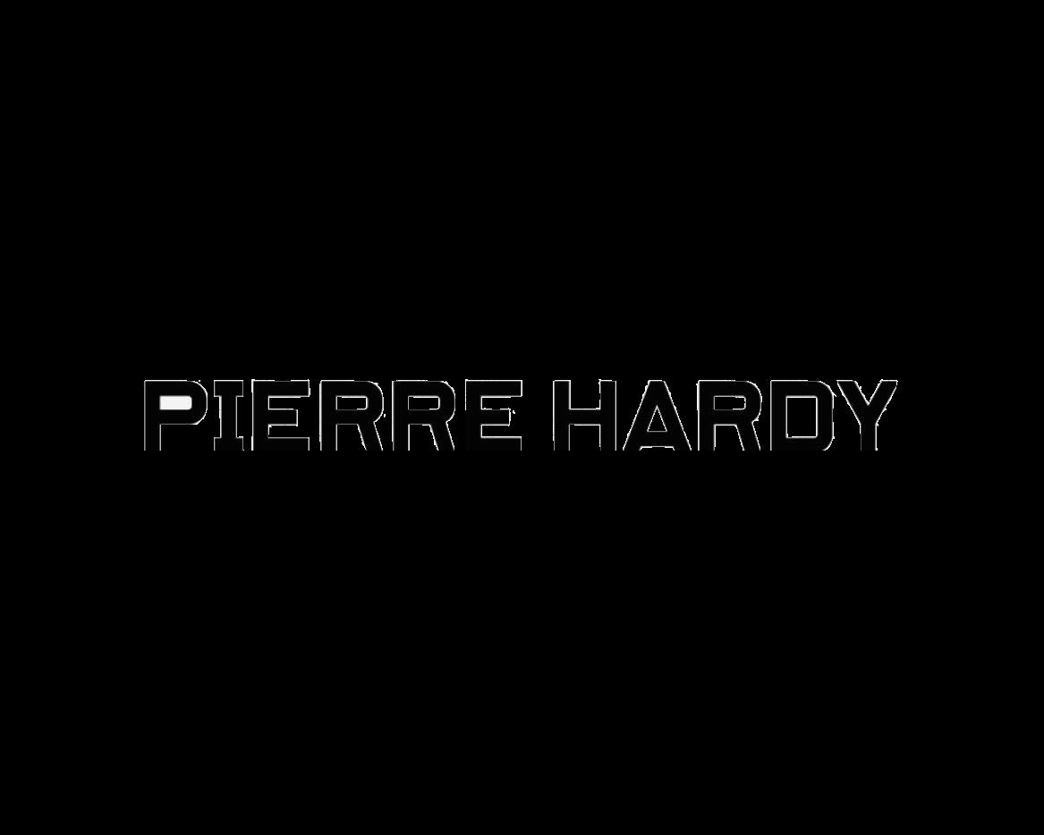 MSA10_PIERRE_HARDY - copie